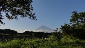富士山とジーンズ