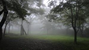 霧のアトリエ