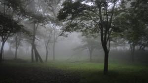 霧のアトリエ2