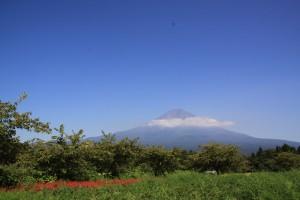 富士山とデニムリペア2